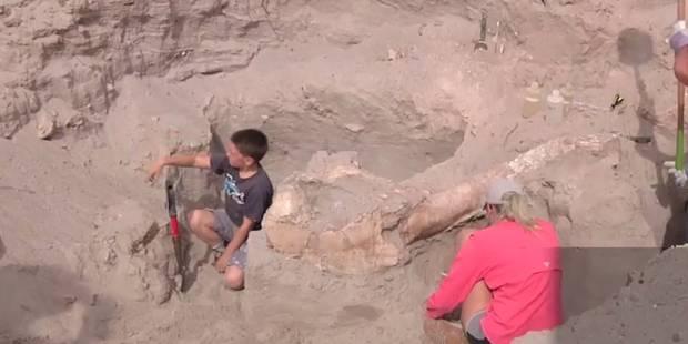 Un enfant de 10 ans fait une découverte incroyable dans le désert ! - La DH