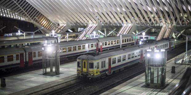 Liège : un homme interpellé à la gare des Guillemins avec 100 grammes de cocaïne - La DH