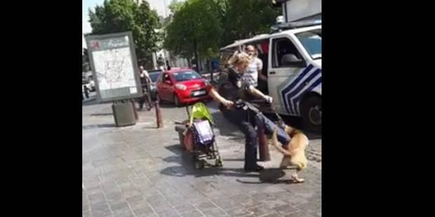 """Un chien policier """"recadré"""" : le bad buzz (VIDEO) - La DH"""
