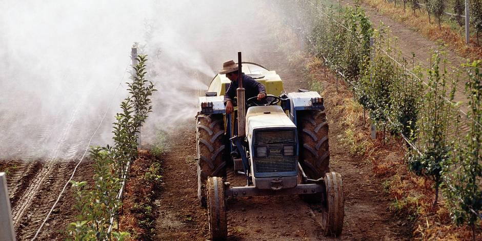 Pesticides dans les écoles à Genappe : le SAMI sera sollicité