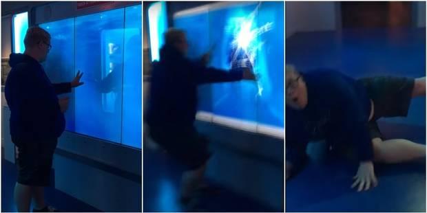 Au musée de l'espionnage, ce grand requin blanc surprend tous ceux qui s'y frottent (VIDEOS) - La DH