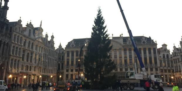 Le sapin de Noël est arrivé sur la Grand-Place (PHOTOS et VIDEO) - La DH