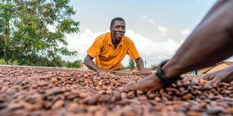 """Production de chocolat au Ghana: """"Le sociétal est dans nos gènes"""" - La DH"""