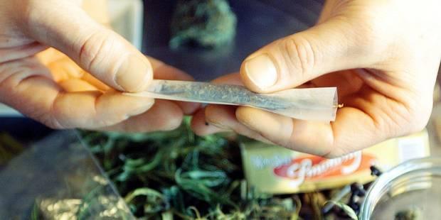 Pris en flagrant délit de deal de cannabis à Estaimpuis - La DH