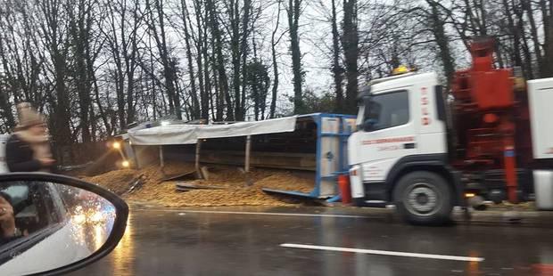 Thieu: un camion se retrouve sur la flanc et perd son chargement de pommes de terre - La DH