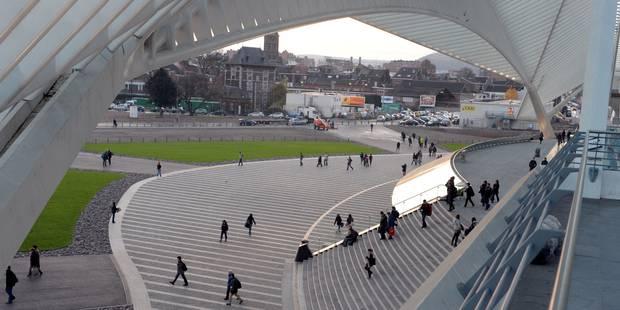 Le Festival de Sculpture de Glace de Liège vous ouvre ses portes - La DH