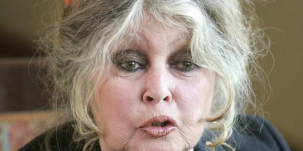 """La cause animale """"cinquième roue du carrosse présidentiel"""", dénonce Brigitte Bardot - La DH"""