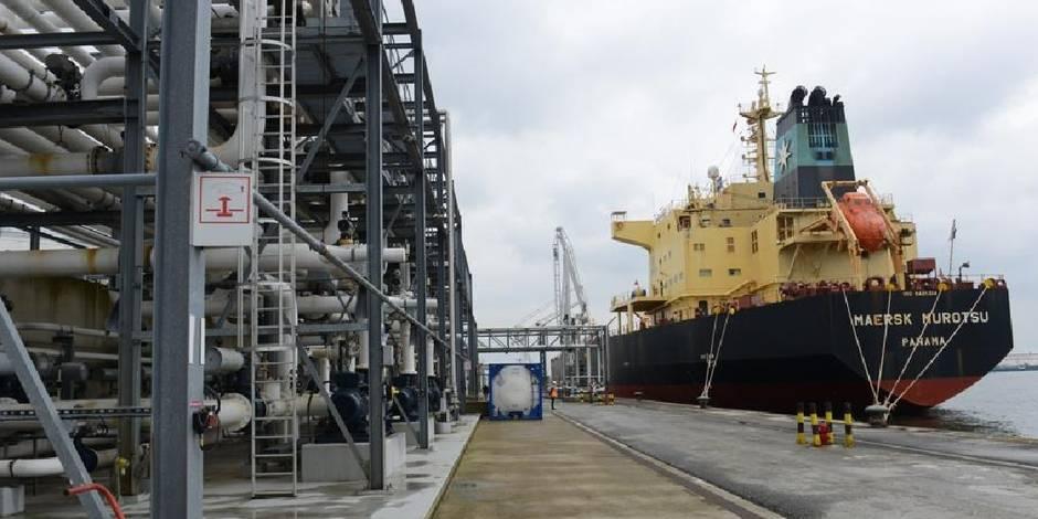 Saisie record dans le port d 39 anvers 7 tonnes de coca ne retrouv es entre des bananes la dh - Port d anvers belgique adresse ...