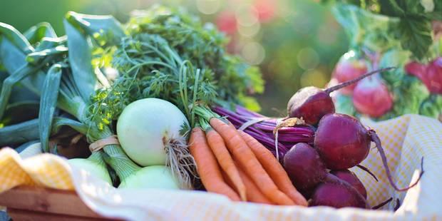 Voici le top 10 des pays européens pour les végétariens, la Belgique dans le classement - La DH