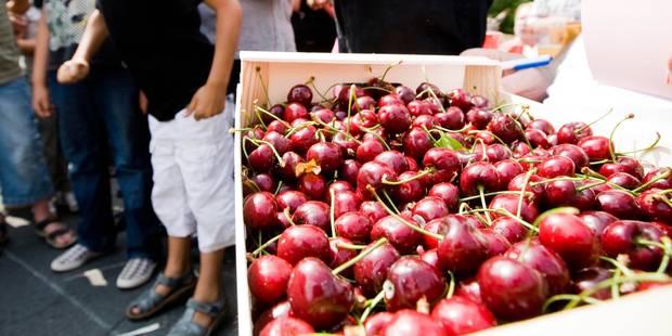 Patrimoine : les cerises schaerbeekoises en péril ! - La DH
