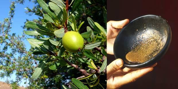 Les mille vertus de l'huile d'argan - La DH