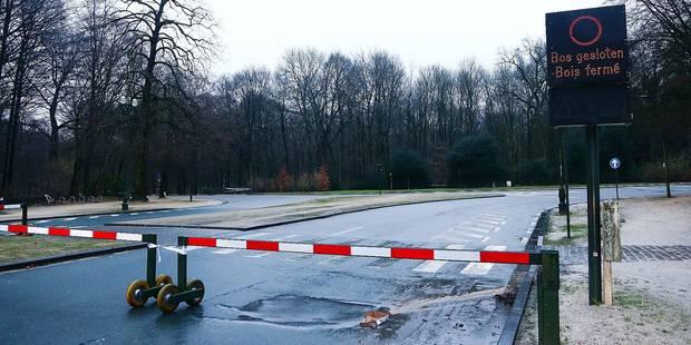 Bruxelles: 100 nouveaux panneaux de signalisation - La DH