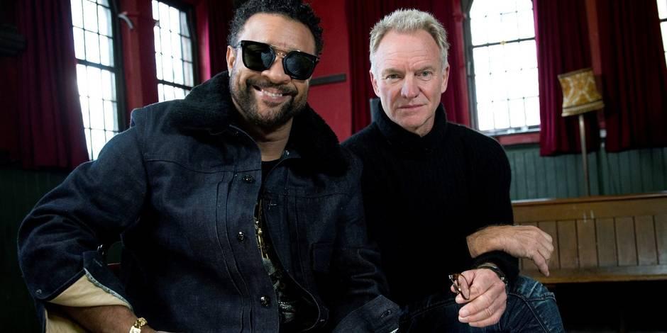 Sting & Shaggy en gais lurons: le duo inattendu de ce début d'année - La DH