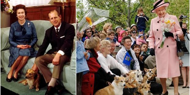 Elizabeth II est dévastée par la mort de son dernier corgi - La DH
